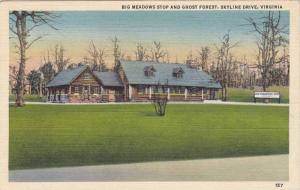 Big Meadows Stop and Ghost Forest, Skyline Drive, Virginia, 1930-40s