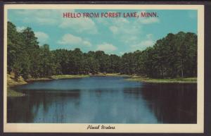 Hello From Forest Lake,MN Postcard BIN