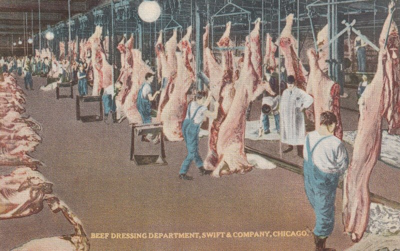 CHICAGO, Illinois, 1900-1910s; Beef Dressing Department, Swift & Company