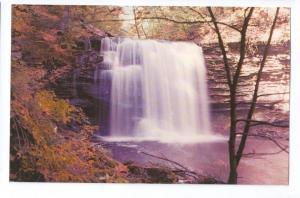 Waterfall Ricketts Glen State Park Harrison Wright Falls PA