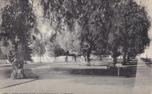 View In City Park, SAN BERNARDINO, California, 1900-1910s