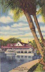 Florida Silver Springs Front View of Beautiful Silver Springs Curteich