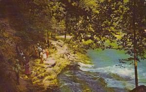 Main Boil Of The Big Spring Big Spring State Park Van Buren Missouri 1965