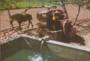 Spain Chain Pump Postcard