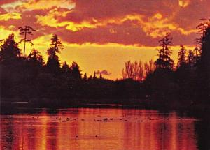 Canada Lost Lagoon Stanley Park Vancouver British Columbia