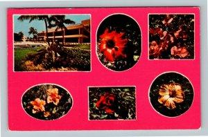 Caribbean, Grand Bahama Hotel, Tropical Flowers, Chrome c1977Postcard