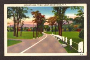 NY Greetings from WEST COXSACKIE NEW YORK Postcard PC