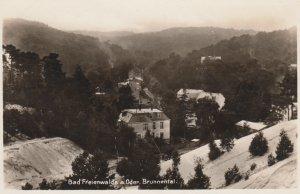 RP: Bad Frienwalde a. Oder , Brunnental , 1920-30s