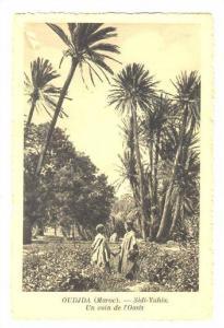 Arab Kids, OUDJA (Maroc.).-Sidi-Yahia, Un coin de l'Oasis, 1910-30s