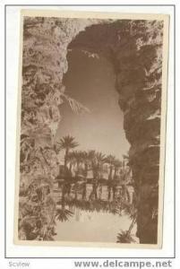 RP Vue originale dans un Oasis, 1920-30s
