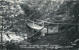 RPPC  PORCUPINE MOUNTAINS State Park, MI ~ Trail to Lake of the Clouds  Postcard