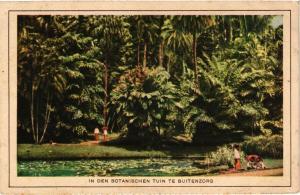 CPA Indonesia, In den Botanischen Tuin te Buitenzorg (360377)