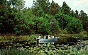 Georgia Okefenokee Swamp Park Tour Group Cruise By Boat