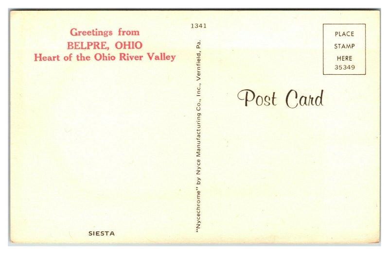 BELPRE, Ohio ~ Deer Laying in Treed Park Mule Whitetail Vintage Postcard