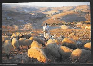 Israel, Bethlehem, Shepherd's Field, unused