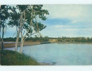 Pre-1980 TOWN VIEW SCENE Alberton Prince Edward Island PE p9630
