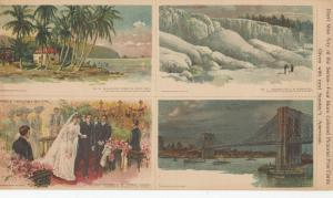 Midwinter , Porto Rico & 3 other images 1903