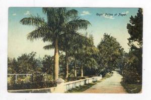 Royal Palms at Paget, Bermuda, 00-10s
