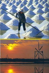 POSTAL 57135: Morning time at the salt field in Samootsongkram in Thailand