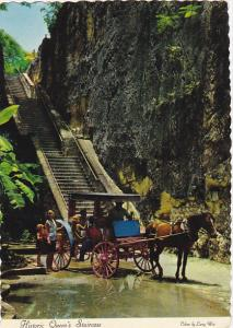 Bahamas Nassau Horse Drawn Carriage At Historic Queen's Staircase