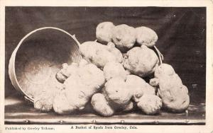 Greeley Colorado Basket of Spuds Potatos Antique Postcard K56423