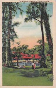 Florida Silver Springs The Big Spring At Silver Springs