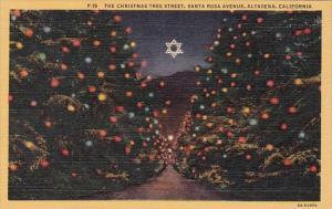 The Christmas Tree Street Santa Rosa Avenue Altadensa California