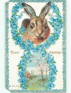 Pre-1907 easter BEAUTIFUL BUNNY RABBIT FACE & BLUE FLOWERS o3329