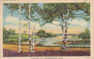 Maine Greetings From Skowhegan 1940 Curteich