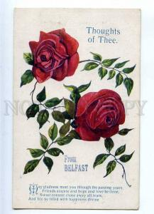 233351 ROSE Flowers THOUGHTS OF THEE From Belfast Vintage PC