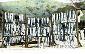 Santa Catalina Island, CA, USA Fishing 1908 top edge has a small tear, very l...
