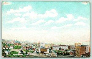 Duluth Minnesota~Birdseye Panorama~Homes~French & Bassett Furniture~Skyline~1908