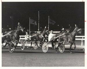MEADOWLANDS Harness Horse Race , GLEN ALMAHURST winner, 1984