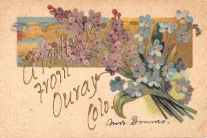 Ouray Colorado Flower Greeting Antique Postcard K93076