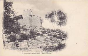 Tour Denecourt, Foret De Fontainebleau (Seine et Marne), France, 1900-1910s