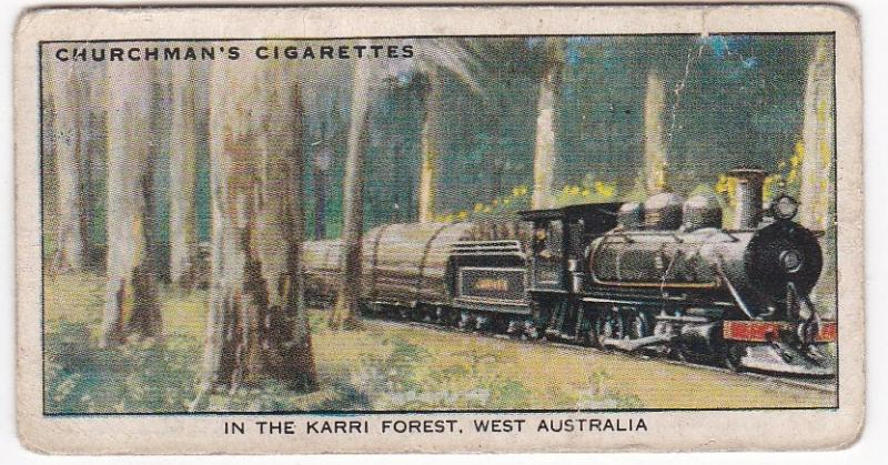Cigarette Card Churchman EMPIRE RAILWAYS No 47 In the Karri Forest, W Australia
