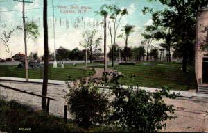 New York Cohoes West Side Park 1908