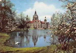 Hannover Neues Rathaus Lake Swan Bird Town Hall