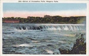 New York Niagara Falls Brink Of Horseshoe Falls