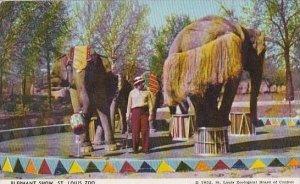 Missouri St Louis Zoo Elephant Show