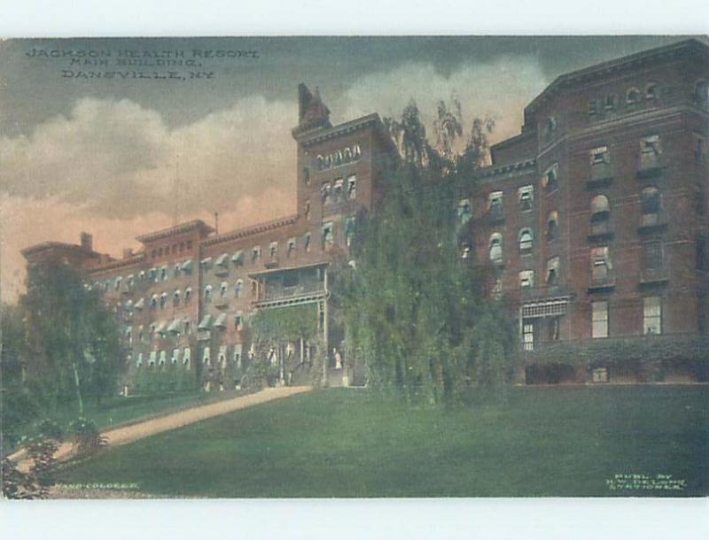 Divided-Back JACKSON HEALTH RESORT BUILDING Dansville New York NY c4929