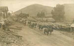 C-1910 Logging Lumber Yard Freight Team RPPC Photo Postcard 3500