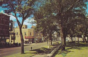 Charlotte Street , ST. JOHN , New Brunswick , Canada , 50-60s