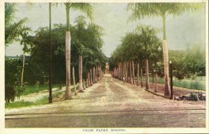indonesia, BORNEO BALIKPAPAN, Street with Palm Trees (1920s) Postcard