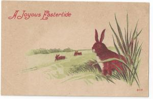 Vintage Easter Postcard Rabbits Tall Grass Lithograph c 1910