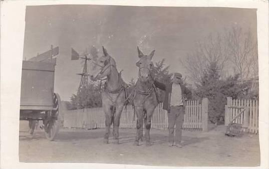 Man Standing With Horses Real Photo