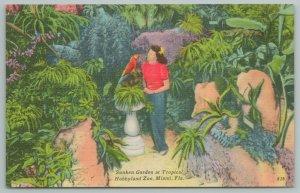 Miami Florida~Tropical Hobbyland Zoo~Sunken Gardens~Parrot~Vintage Postcard