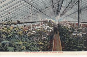 Interior Berterman's Green House, INDIANAPOLIS, Indiana, 1900-1910s