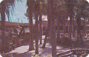 Florida Clearwater Ralm Garden Restaurant 1951