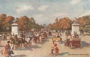 PARIS, France, 1900-10s; Avenue Des Champs Elysees ; TUCK